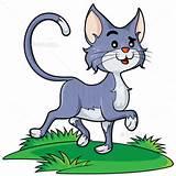 Cartoon kat